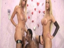 1617 Blonde Shemale Attention - Scene 1